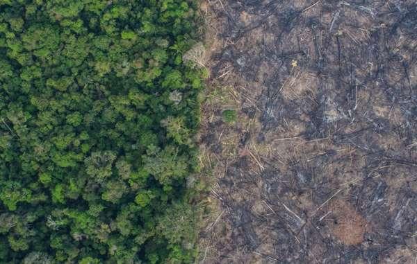 """""""Fotografia aerea scattata dalla ONG brasiliana Kaninde del disboscamento e degli incendi nello stato di Rondonia, vicino agli Indiani incontattati e agli Uru Eu Wau Wau."""""""